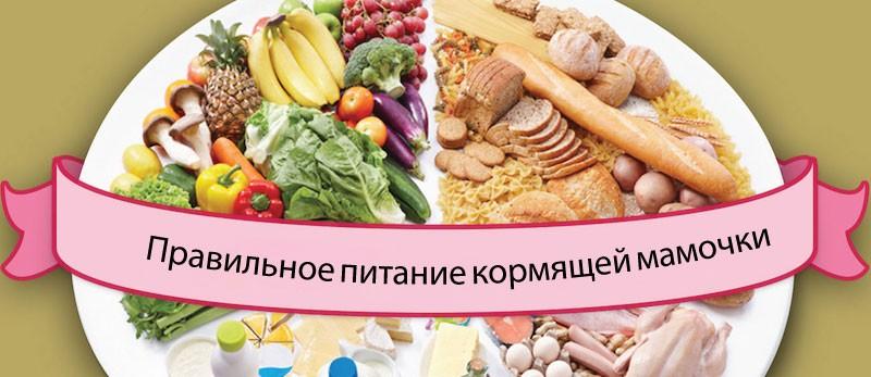 Питание кормящей мамы - мнение Комаровского
