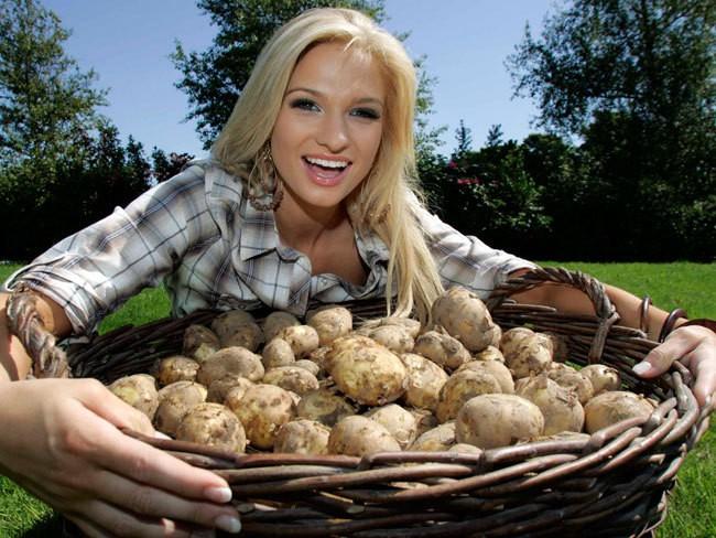 Можно ли картошку при грудном вскармливании